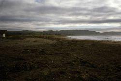Doran Beach Photo