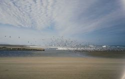 Point Reyes Great Beach Photo