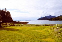 A placid bay in Southeast Alaska Image