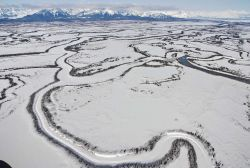 An aerial view of meandering frozen channels of the Copper River reminiscent of Nazca Lines. Image