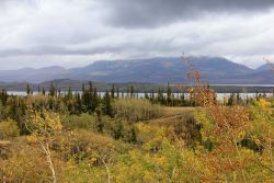 A fall scene along the Dempster Highway headed north to the MacKenzie River Image