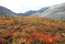 Looking into Windy Pass Valley along the Dempster Highway Photo