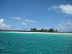 In the shallow aquamarine waters of the lagoon at Palmyra Island. Photo