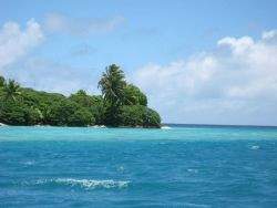 Vegetation including the ubiquitous palm trees of the tropical Pacific cover Palmyra Island and its associated offshore islets. Photo
