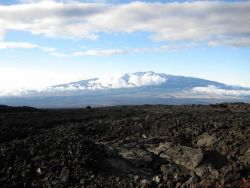 Looking across lava fields to Mauna Loa, the tallest mountain on earth from base to peak Photo