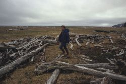 Allen Shimada with driftwood thrown up on the shores of an Aleutian Island by powerful North Pacific storms. Image
