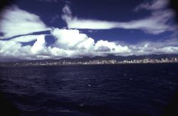 A panoramic view of the Honolulu skyline Image