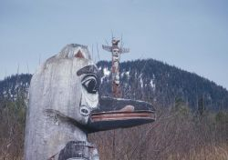 Totem poles at Sitka National Monument Photo