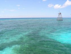 Molasses Reef unmanned light Photo
