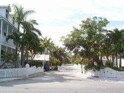 A pleasant Key West street. Photo