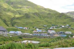 Looking over wildflowers and a small lake to a residential district of Dutch Harbor. Photo