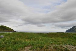 Looking over a field of grass and sea oats to the Bering Sea. Photo