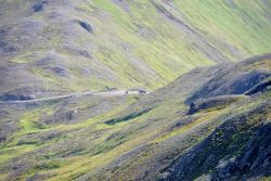 Sparse moss covers rock as one heads higher in the mountains of Unalaska Island Photo
