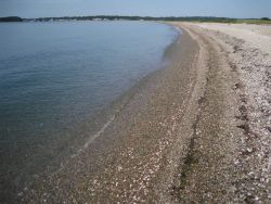 Looking along the arcuate gravel and shell spit at Bluff Point State Park Photo