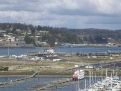 Portion of the harbor at Newport, Oregon Photo