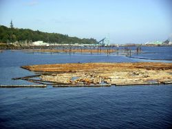 Lumber mill and paper mill at Port Angeles. Photo