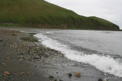 A concentration of cobbles along a Dutch Harbor beach attesting to the sometimes power of the surf here. Photo