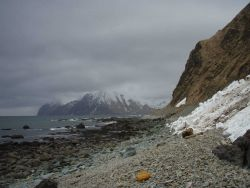 Doesn't look like much sun-bathing is done on this beach! Cobbles, boulders, and snow coming to the base of mountain cliffs along this Aleutian beach. Photo