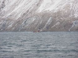 The stack of the bulk carrier SELENDANG AYU whose engine failed and was driven ashore on the north shore of Unalaska Island. Photo