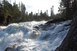 Baranof River waterfalls as they enter Warm Springs Bay. Photo
