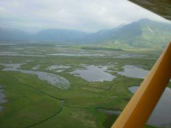 Coastal wetlands between Hallo Glacier and Shelikof Strait. Photo