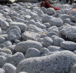 Boulders rounded from incessant pounding of the waves during winter storms cover a Shumagin Island beach. Photo