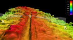 Oblique angle view showing gridded EM102 multibeam bathymetry along Western Galapagos Rift Photo
