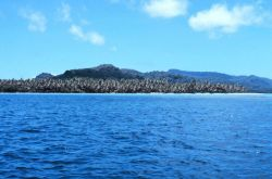 Coconut plantation on coral spit of high volcanic island Photo