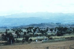 The rolling countryside of Las Villas Province. Photo