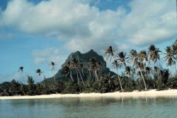 Palm trees and a volcanic plug witha a white sandy beach in the foreground. Photo