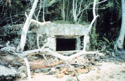 A World War II Japanese concrete bunker Photo