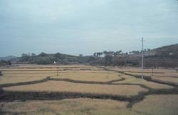 South China countryside - a view from the train. Photo