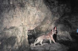 Decorative ceramic tiger in cave Photo