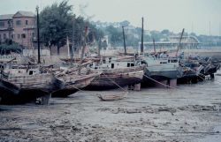 Chinese junks in the mud at low tide. Photo