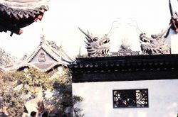 Dragon heads adorn a temple. Photo