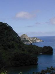 A view of a cove as seen from a hillside on Isla Cocos. Image