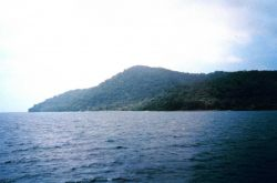 A view of Isla Cocos. Photo