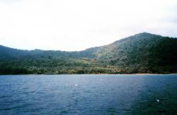A view of Isla Cocos. Image