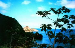 A cove and rocky headland seen from a hill on Isla Cocos. Image