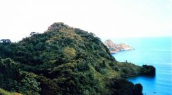 A view from the hills of Isla Cocos. Image