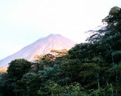 Arenal Volcano seen above the rain forest. Image
