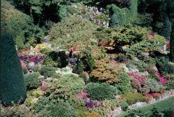 Butchart Gardens. Photo