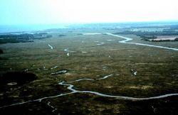 Delaware National Estuarine Research Reserve. Photo