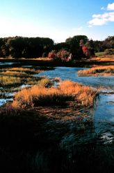 Great Bay National Estuarine Research Reserve. Photo