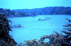 Old Woman Creek National Estuarine Research Reserve. Photo