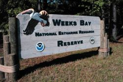 Weeks Bay National Estuarine Research Reserve Photo
