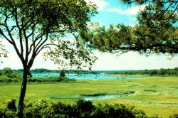 Narragansett Bay National Estuarine Research Reserve A view of Coggeshall Marsh which is located at the north end of Prudence Island. Photo