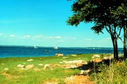 Narragansett Bay National Estuarine Research Reserve A typical New England field strewn with boulders Photo