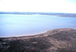 Grand Bay National Estuarine Research Reserve Photo