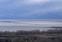 Ponds are constructed to control flow of water into various portions of the refuge Photo